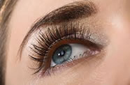 Eyelashes and Eyebrow Tinting and shaping